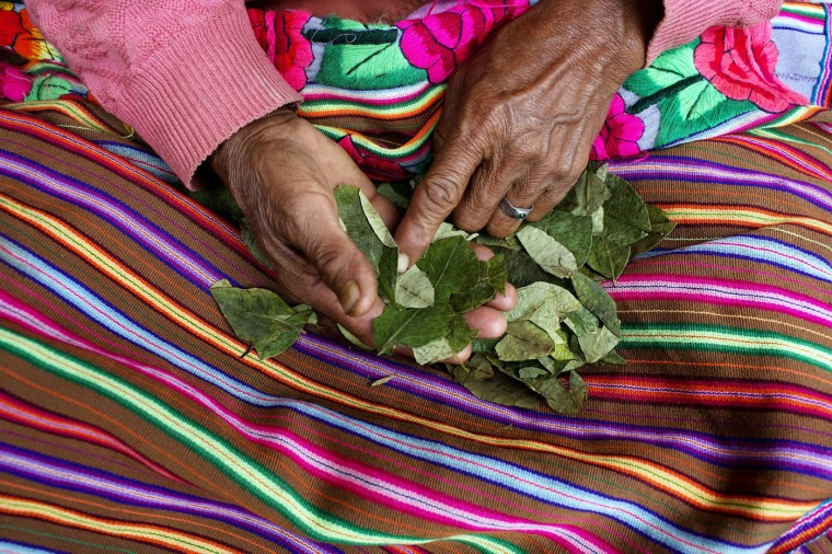 In this March 15, 2015 photo, Rufina Galvez reads coca leaves outside her house in La Mar, province of Ayacucho, Peru. Her son Yuri, a cocaine backpacker, always checked in by phone. So when he didnít call after a March 2013 smuggling trip, his mother turned to reading coca leaves to try to divine his fate, tossing them on her skirt as is customary. ìThe leaves fell spine-up, a bad sign,î she said. (AP Photo/Rodrigo Abd)