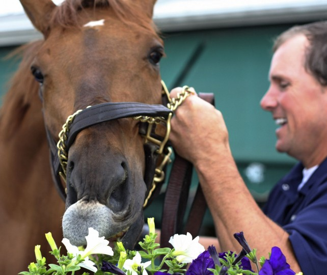 Preakness entrant Terrain takes a bite at the flowers at Stakes barn at Pimlico Race Course with exercise rider James Jones after working out, Thursday, May 14, 2009, in Baltimore. (AP Photo/Garry Jones)