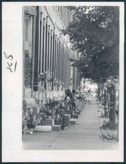 08-22-1977: A floral celebration on McColloh street. (Sun file - Richard Childress)