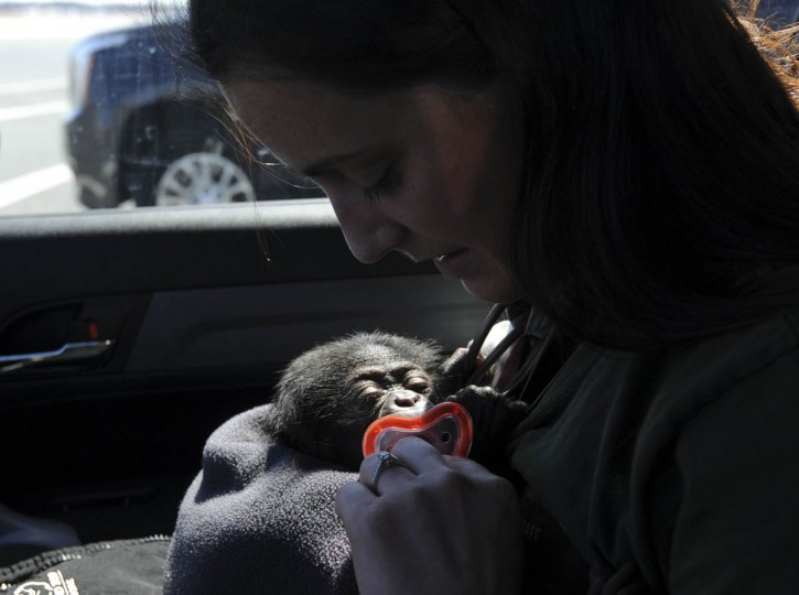 Claire MacNamara holds a binkie as Keeva sucks on it as she wakes up from a nap. (Kim Hairston/The Baltimore Sun)