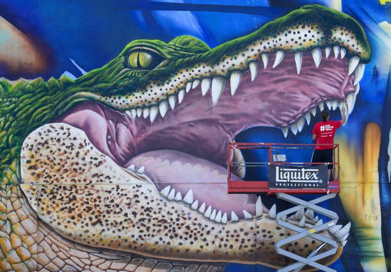 "Artist Sebastien ""Mr. D"" Boileau works on his mural depicting, Ed-U-Gator, the University of Houston-Downtown's mascot, Friday, May 1, 2015, in Houston. The mural will reside on the north side of a storage facility on campus. (Cody Duty/Houston Chronicle via AP)"