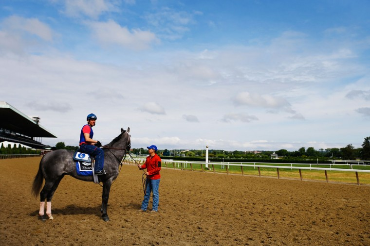 Frosted, with Renzo Morales up walks on the track during training at Belmont Park on June 3, 2015 in Elmont, New York. (Photo by Al Bello/Getty Images)