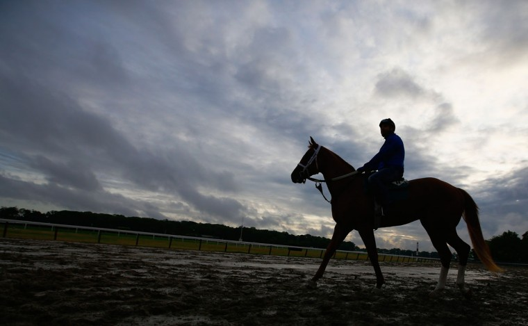 A sillouette of a horse and rider during training at Belmont Park on June 3, 2015 in Elmont, New York. (Photo by Al Bello/Getty Images)