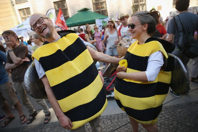 Two activists dressed as bees and protesting against the U.S. agriculture company Monsanto share a laugh during a rally following a protest march attended by approximately 30,000 people against the upcoming G7 summit on June 4, 2015 in Munich, Germany. The leaders of the G7 nations are scheduled to meet at nearby Schloss Elmau June 7-8. (Photo by Sean Gallup/Getty Images)