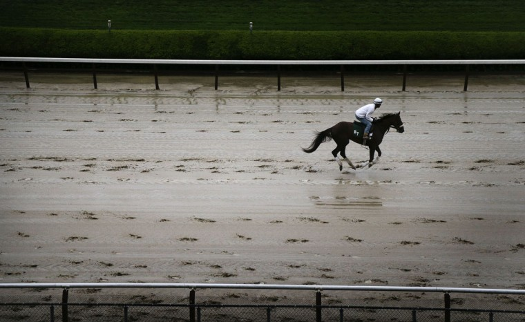 An exercise rider jogs a race horse on the wet track during a workout at Belmont Park, Monday, June 1, 2015, in Elmont, N.Y. Kentucky Derby and Preakness winner American Pharaoh will try for the Triple Crown during Saturday's 147th running of the Belmont Stakes horse race. (AP Photo/Julie Jacobson)