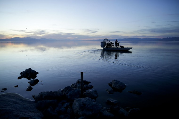 "In this April 29, 2015, photo. biologist Tom Anderson of the Sonny Bono Salton Sea National Refuge Complex steers an airboat across the shallow waters of the Salton Sea near Niland, Calif. Often called the ""The Accidental Sea,"" because it was created when the Colorado River breached a dike in 1905, Salton Sea now faces a looming calamity as coastal Southern California clamors for more water. (AP Photo/Gregory Bull)"