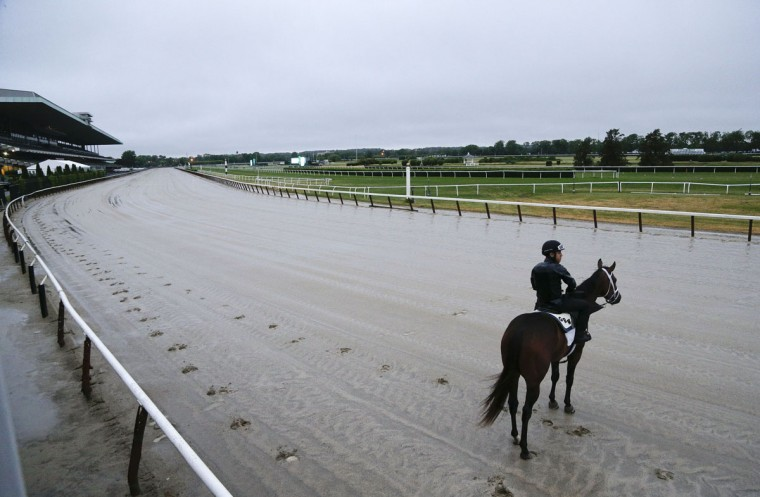 An exercise rider pauses a race horse on the wet track before a workout at Belmont Park, Monday, June 1, 2015, in Elmont, N.Y. Kentucky Derby and Preakness winner American Pharaoh will try for the Triple Crown during Saturday's 147th running of the Belmont Stakes horse race. (AP Photo/Julie Jacobson)