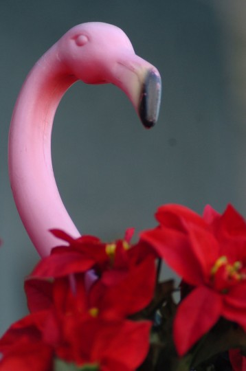 """The decorations for the """"Miracle on 34"""" street Christmas display are going up house-by-house in Hampden. Pink flamingo detail with poinsettias is found at Dan Brewer's home, (Algerina Perna/Baltimore Sun file)"""