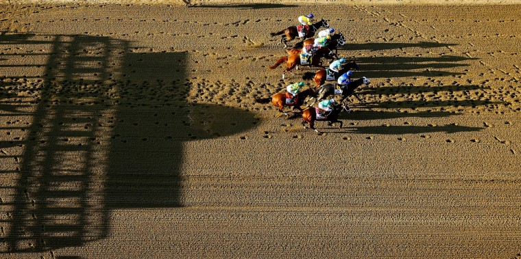 American Pharoah #5, ridden by Victor Espinoza, leads the pack during the 147th running of the Belmont Stakes at Belmont Park on June 6, 2015 in Elmont, New York. With the win American Pharoah becomes the first horse to win the Triple Crown in 37 years. (Streeter Lecka/Getty Images)