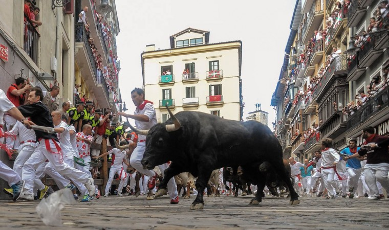 Revelers run with the Tajo and the Reina's fighting bulls entering Estafeta street during the third day of the San Fermin Running of the Bulls festival in Pamplona, Spain. The annual Fiesta de San Fermin, made famous by the 1926 novel of US writer Ernest Hemingway entitled 'The Sun Also Rises', involves the daily running of the bulls through the historic heart of Pamplona to the bull ring. (David Ramos/Getty Images)