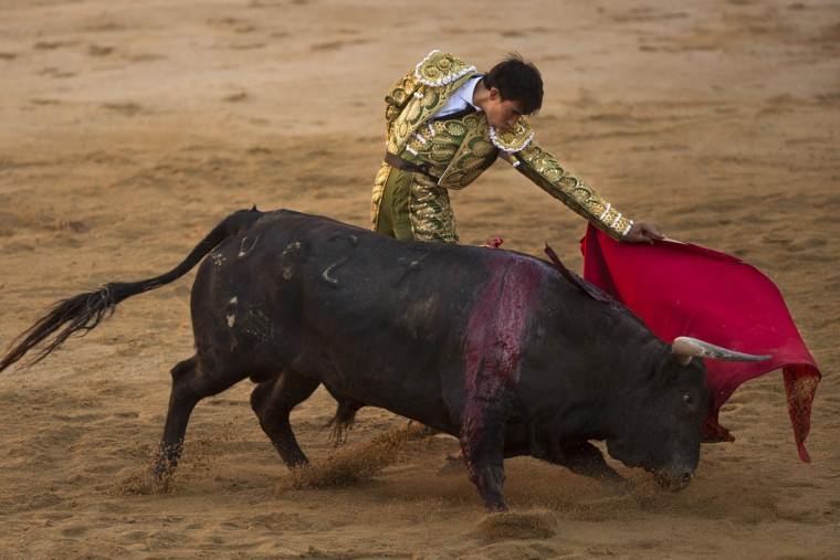 Jimenez Fortes performs with a bull during a bullfight of the San Fermin festival in Pamplona, Spain, Wednesday, July 8, 2015. Revelers from around the world arrive in Pamplona every year to take part in some of the eight days of the running of the bulls. (Andres Kudacki/AP photo)