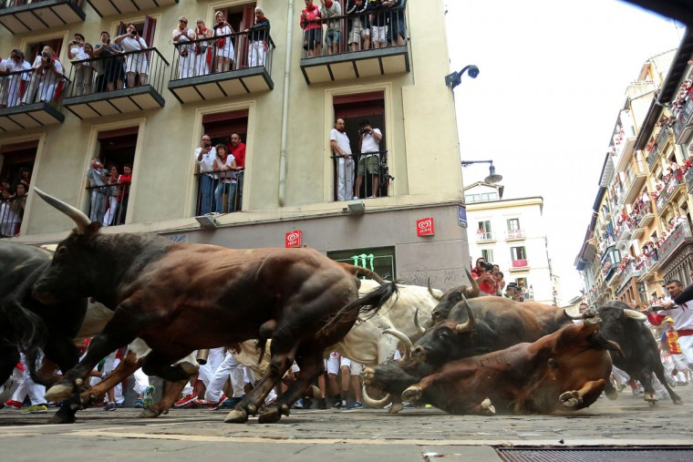 """A Del Tajo la Reina's bull falls during the second """"encierro"""" (bull-run) of the San Fermin Festival in Pamplona, northern Spain, on July 8, 2015. (CESAR MANSO/AFP/Getty Images)"""