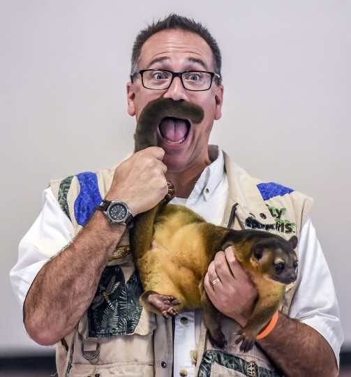 Amazon John holds a kinkajou during the Silly Safari at Hogsett Elementary School, Thursday, July 9, 2015, in Danville, Ky., as part of a Summer Reading Program. (Clay Jackson/The Advocate-Messenger via AP)