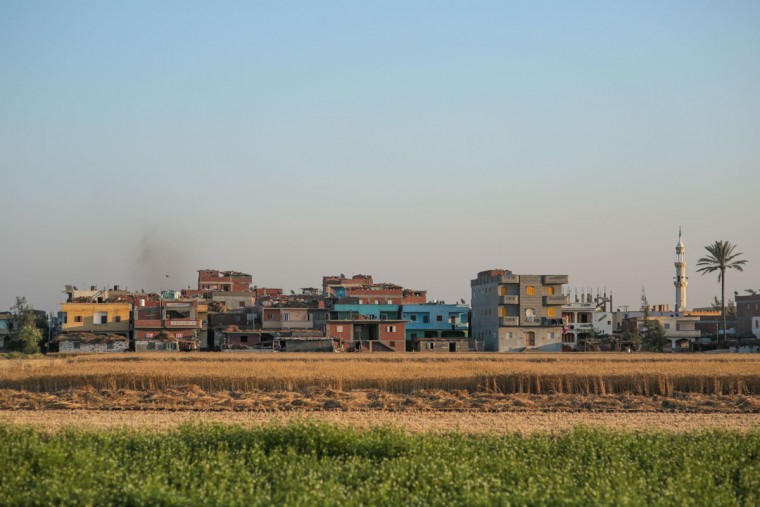 In this Monday, May 7, 2015 photo, houses stand in close proximity to agricultural land, in a village in the Nile Delta town of Behira, 300 kilometers (186 miles) north of Cairo, Egypt. Building without permit on agricultural land is now a crime punishable by jail or fines _ but it hasnít stopped. In the absence of government subsidies and modern machinery, impoverished famers struggle to make ends meet and feel they have no choice but to build on their own land or sell it off, bit by bit. (AP Photo/Mosa'ab Elshamy)