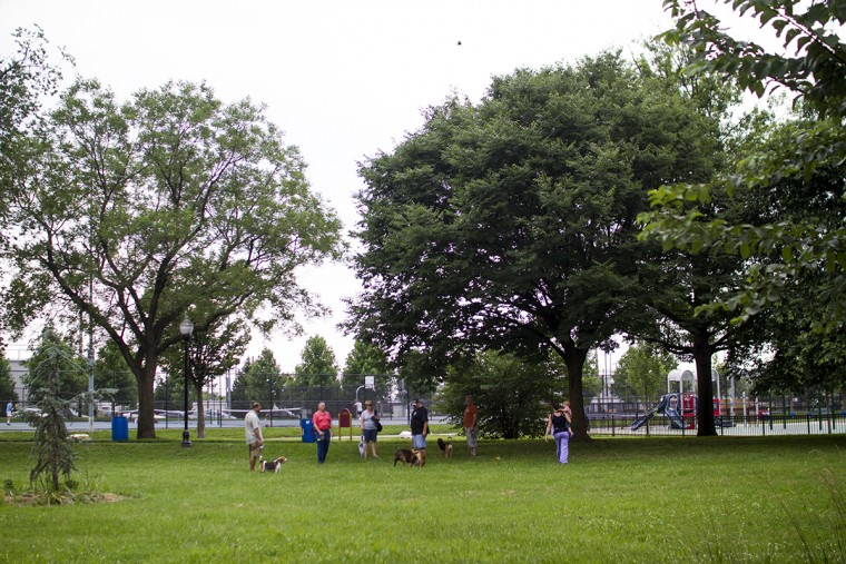 The dog park at Latrobe Park and Banner Field in Locust Point. (Kalani Gordon, Baltimore Sun, June 2015)