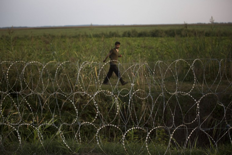 A migrant looks at the barbed wire fence from the Serbian side of the border to the Hungarian town of Roszke, on Thursday, Sept. 3, 2015. The 28-nation European Union has been at odds for months on how to deal with the influx of more than 332,000 migrants this year as Greece, Italy and Hungary have pleaded for more help. (AP Photo/Santi Palacios)