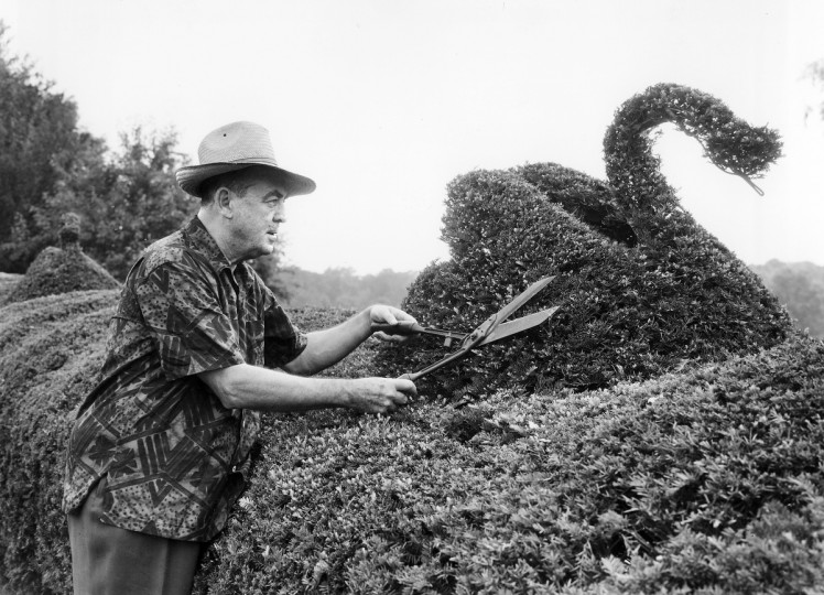 1957 - Harvey Ladew trims up a swan in his garden. Ladew Gardens consists of 15 formal gardens spread over 22 acres. Experts have praised his topiary as among the best examples in the United States. (A. Aubrey Bodine/Baltimore Sun)