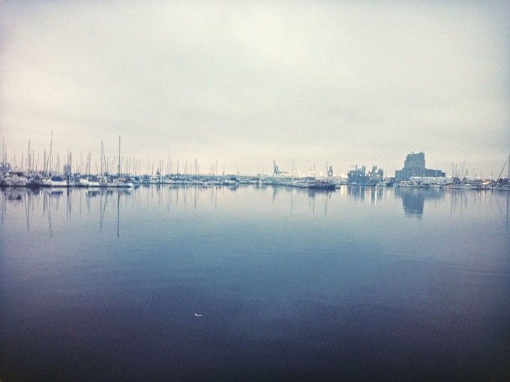 Foggy morning along the harbor.