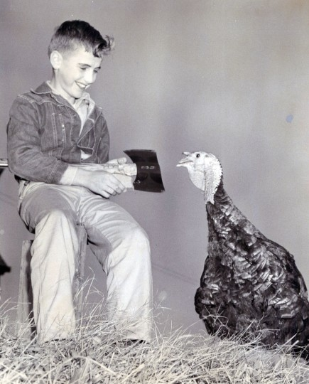 Howard Laudenklos, 13 years old, sharpening his axe as a turkey looks on. (Ellis Malashuk/Baltimore Sun, 1958)