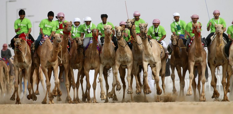 Jockeys compete in a camel race during the Mazayin Dhafra Camel Festival in the desert near the city of Madinat Zayed, 150 kms west of Abu Dhabi, on December 25, 2015. (KARIM SAHIB/AFP/Getty Images)