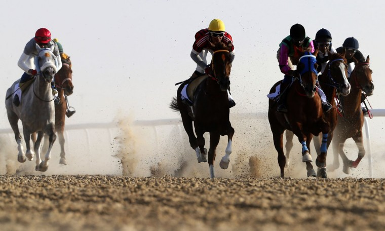 Jockeys race purebred Arabian horses on the sidelines of the Mazayin Dhafra Camel Festival in the desert near the city of Madinat Zayed, 150 kms west of Abu Dhabi, on December 27, 2015. (KARIM SAHIB/AFP/Getty Images)