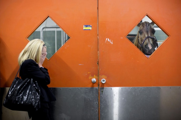A horse owner waits outside the clinic as veterinarians examine her horse at the Hebrew University's Koret School of Veterinary Medicine in Rishon Lezion, Israel. Veterinarians at the hospital operate on about two dozen horses a month, most of them pleasure and show horses. (AP Photo/Oded Balilty)