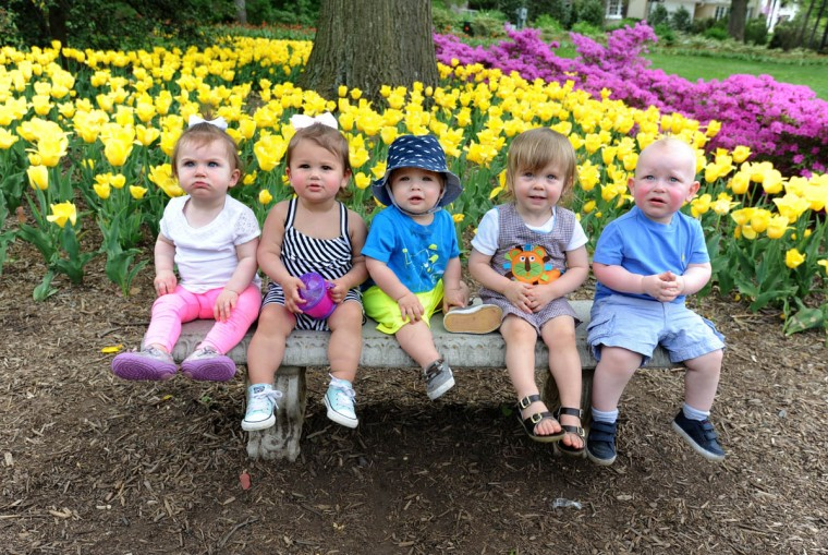Posing for their moms at Sherwood Gardens are from left: Lila Friedlander, one year; Jocelyn Marcus, sixteen months; Zachary Levinson, thirteen months; Reid Pfeffer, one and a half; and Dylan Attman, one and a half. Moms and children got together for a picnic. Afterwards, their moms took their pictures together. (Algerina Perna, Baltimore Sun)