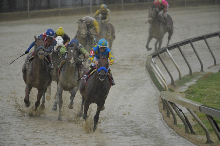 Kentucky Derby winner American Pharoah (1), ridden by Victor Espinoza, leads the pack at the fourth turn to victory in the 140th Preakness Stakes. (Karl Merton Ferron/Baltimore Sun)