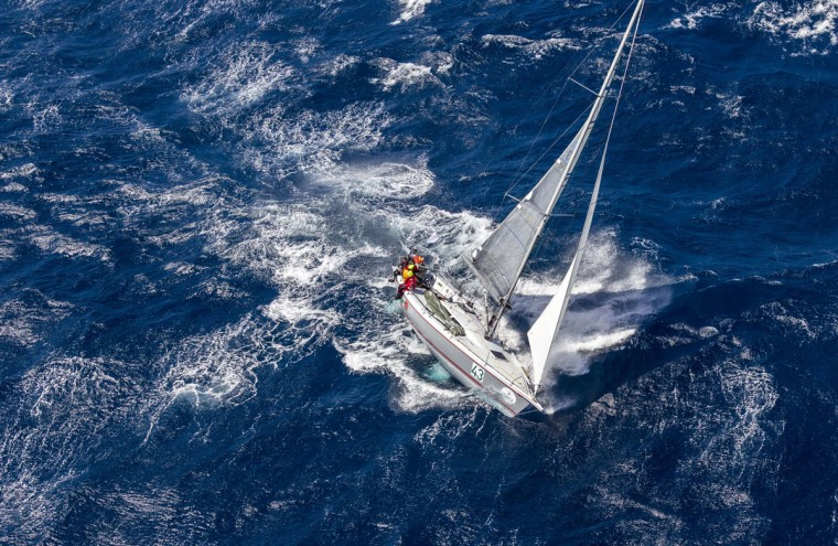 This handout photo from Rolex, shows Wild Rose competing in the Sydney to Hobart yacht race on December 27, 2015. (STEFANO GATTINI/AFP/Getty Images)