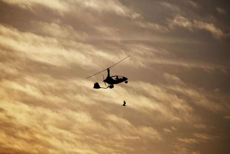 A gyrocopter flies near a bird at sunset at the World Air Games in Dubai, United Arab Emirates, on Sunday, Dec. 6, 2015. The World Air Games includes precision aerobatics, skydiving and hot air balloon competitions. (AP Photo/Jon Gambrell)