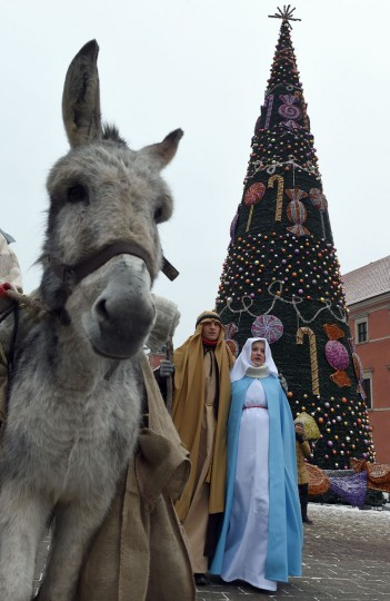 A man and a woman dressed as Joseph and Mary walk past a donkey during the traditional Epiphany parade in Warsaw on January 6, 2016. The Epiphany day celebrates the visit of the Three Kings to the infant Jesus. (AFP Photo / Janek Skarzynski)