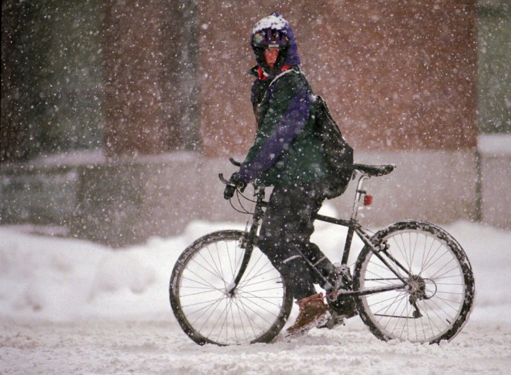 "Jessica Grimes, a messenger for VMW Express, pedals on Baltimore St. despite the morning snowstorm. When asked why she would cycle in weather like this, she replied, ""I have to make money."" (Amy Davis/Baltimore Sun)"