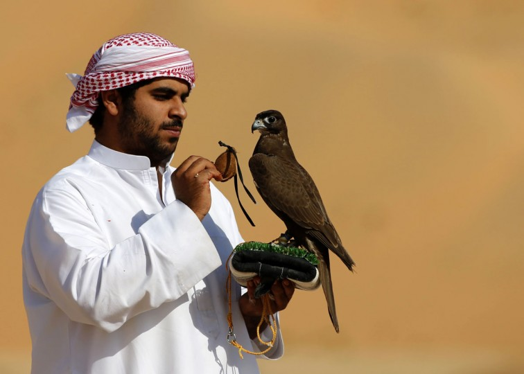 An Emirati falconer prepares to train his bird on January 6, 2016, during the Liwa 2016 Moreeb Dune Festival in the Liwa desert, some 250 kilometers southwest of Abu Dhabi. (KARIM SAHIB/AFP/Getty Images)