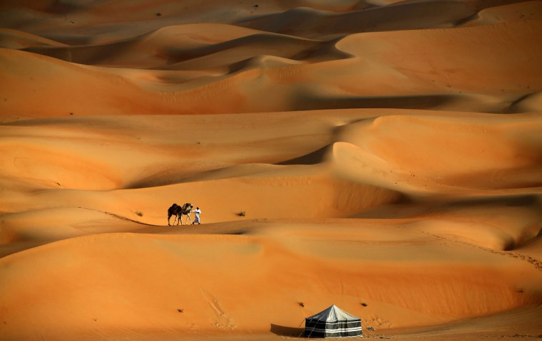 A man walks his camels across the Liwa desert, some 250 kilometers west of the Gulf emirate of Abu Dhabi, during the Liwa 2016 Moreeb Dune Festival on January 5, 2016. (KARIM SAHIB/AFP/Getty Images)