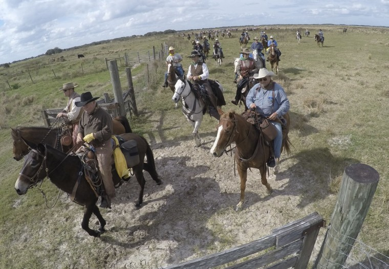 In this, Tuesday, Jan. 26, 2016 photo, riders arrive for lunch during the Great Florida Cattle Drive 2016, in Kenansville, Fla. Despite their efforts to re-create the life of Florida cowboys from the 19th century by wearing bonnets, suspenders and cowboy hats, and sleeping in sod fields at night, the more than 400 participants who took part in the once-in-a-decade cattle drive through the heart of Florida this week couldnít help but allow for little bits of the 21st century to seep in. Semi-trailers hauled catered food from campsite to campsite for the weeklong trek. (AP Photo/Wilfredo Lee)