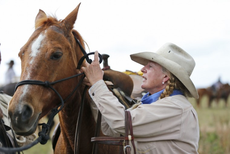 In this, Tuesday, Jan. 26, 2016 photo, Linda Ballantine Brown bridles her horse Dual Cap Gun during the Great Florida Cattle Drive 2016, in Kenansville, Fla. The purpose of the once-a-decade Great Florida Cattle Drive was to draw attention to Floridaís deep cowboy history. ìYou do whatever you can to keep it going,î said Brown, whose husbandís family will have been running a ranch in Osceola County for six generations, if her grandchildren eventually takeover as expected. ìItís a tough life. You have to love the land to do it.î (AP Photo/Wilfredo Lee)