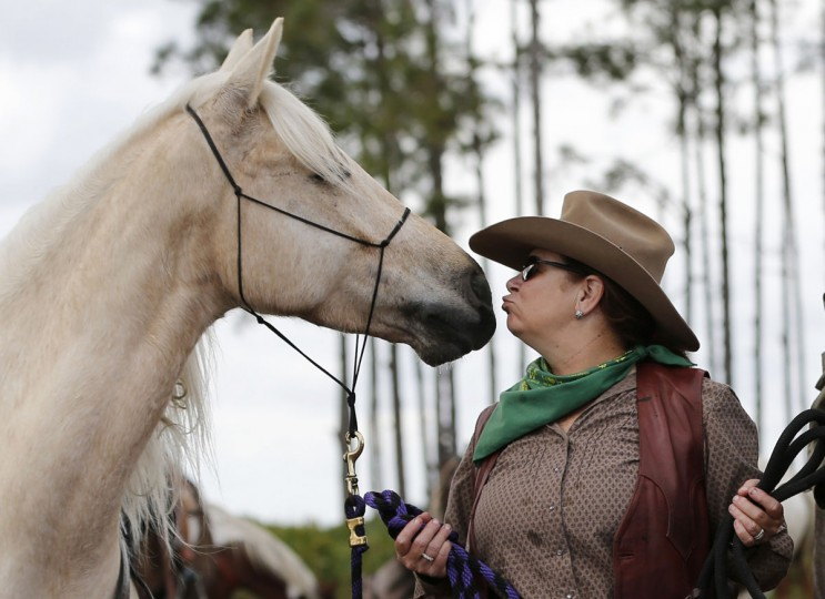 In this Tuesday, Jan. 26, 2016 photo, Wendy Wilson of Ocala, Fla., kisses Arcus the horse as she and other riders stop for lunch and to water the horses during the Great Florida Cattle Drive 2016, in Kenansville, Fla. (AP Photo/Wilfredo Lee)