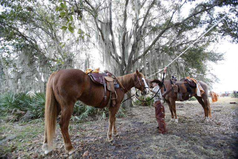 In this Tuesday, Jan. 26, 2016 photo, Chris Helton, 12, of Sandersville, Ga., prepares his horse, Dakota, for the second day of the Great Florida Cattle Drive 2016, in Kenansville, Fla. The purpose of the once-a-decade Great Florida Cattle Drive is to draw attention to Floridaís deep cowboy history at a time when the state is known more for Disney World fantasies, South Beach flashiness, Panama City Beach spring break rowdiness and Cape Canaveral rocket launches. (AP Photo/Wilfredo Lee)
