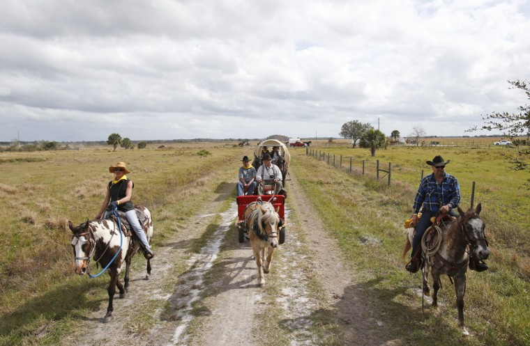 In this, Tuesday, Jan. 26, 2016 photo, riders and wagons drive by during the second day of the Great Florida Cattle Drive 2016, in Kenansville, Fla. (AP Photo/Wilfredo Lee)