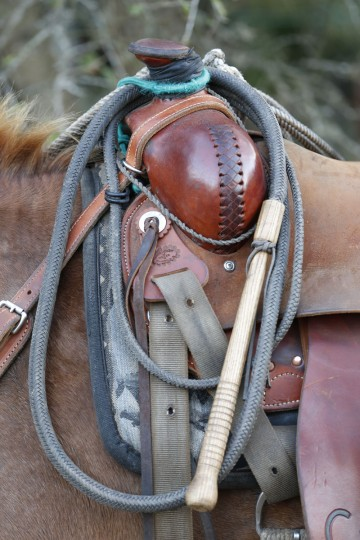 In this, Tuesday, Jan. 26, 2016 photo, a whip hangs from a saddle during the Great Florida Cattle Drive 2016, in Kenansville, Fla. Floridaís cowboys differ from their more famous Western counterparts in a few ways. They are better known for using whips than ropes, and hence earned the name ìcrackersî from the sound of a cracking whip. (AP Photo/Wilfredo Lee)