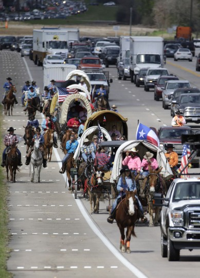 Members of the Sam Houston Trail Ride make their way down a highway in Tomball, Texas, Tuesday, Feb. 23, 2016. More than 3,000 riders from 13 trail rides will converge in Houston on Friday as part of the Houston Livestock Show and Rodeo. The riders will take part in the downtown rodeo parade on Saturday. (AP Photo/David J. Phillip)