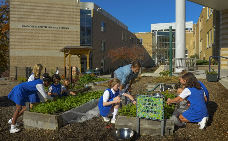 Garden educator Cheryl Carmona supervises students picking vegetables in the Gardens for Learning at Roland Park Country School in Baltimore. (Photo by Doug Kapustin for The Baltimore Sun, Nov. 4, 2015)