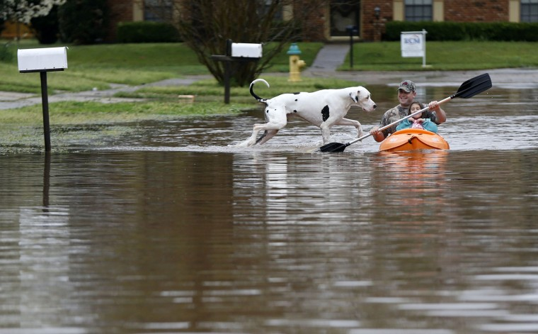 A man paddles a child while a dog playfully follows during rising floodwaters in the Golden Meadows subdivision in Bossier City, La., Wednesday, March 9, 2016. (AP Photo/Gerald Herbert)