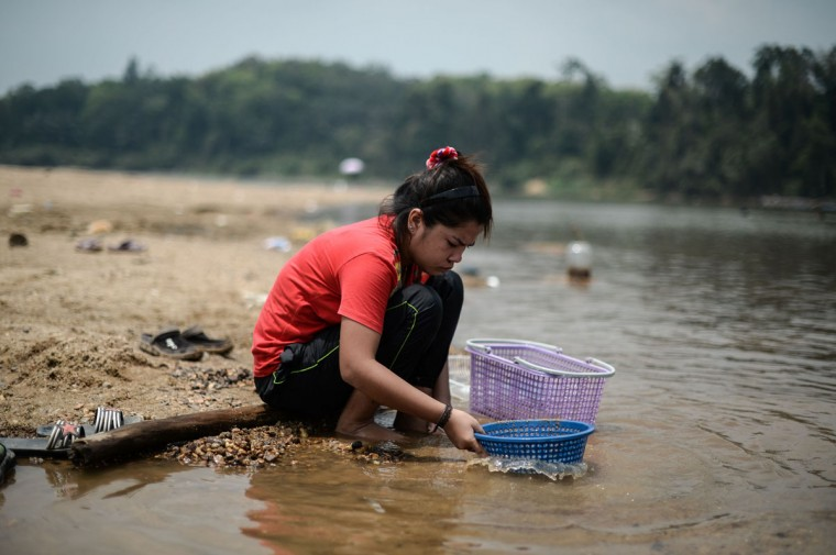 "A woman looks for river shells called ""etok"" along the banks of the Pahang river during an ongoing heatwave in Termerloh, outside Kuala Lumpur, on April 11, 2016. (MOHD RASFAN/AFP/Getty Images)"