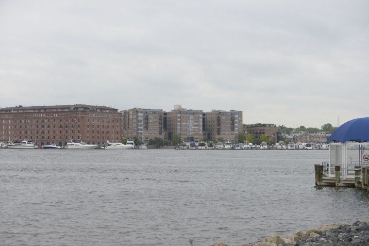 Looking out into the Harbor from the Under Armour campus, which sits next to the port at Locust Point where immigrants would arrive. (Christina Tkacik/Baltimore Sun)