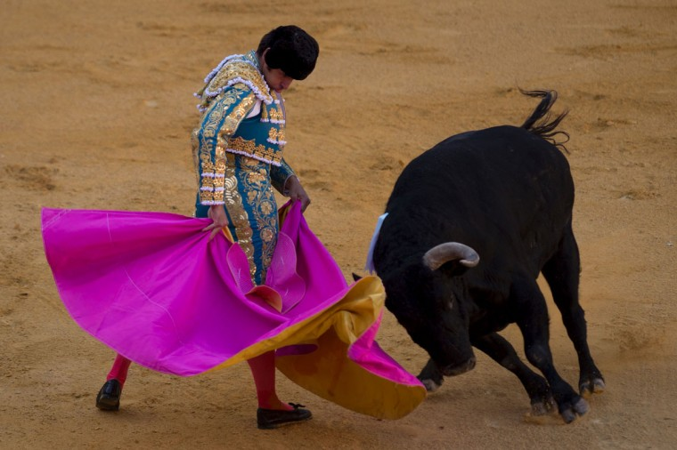 """Spanish matador Cayetano Rivera performs a pass with """"capote"""" on a bull during the Corpus bullfight festival at the bullring of Granada on May 25, 2016.(JORGE GUERRERO/AFP/Getty Images)"""