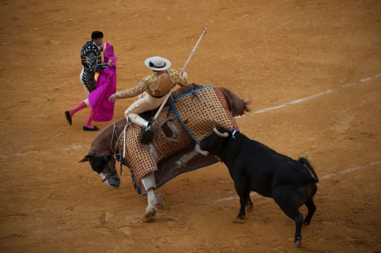 A bull attacks the picador's horse to knock it down during the Corpus bullfight festival at the bullring of Granada on May 25, 2016. (JORGE GUERRERO/AFP/Getty Images)