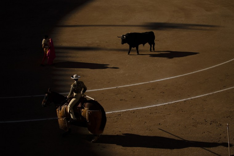 Spanish bullfighter Roman performs with a El puerto de San Lorenzo's ranch fighting bull during a bullfight of the San Isidro's bullfighting fair in Madrid, Spain, Thursday, May 19, 2016. (AP Photo/Daniel Ochoa de Olza)
