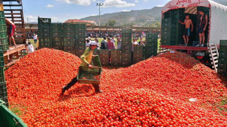 """People participate in the 10th annual tomato fight festival, known as """"tomatina"""", in Sutamarchan, Boyaca department, Colombia, on June 5, 2016. (GUILLERMO LEGARIA/AFP/Getty Images)"""