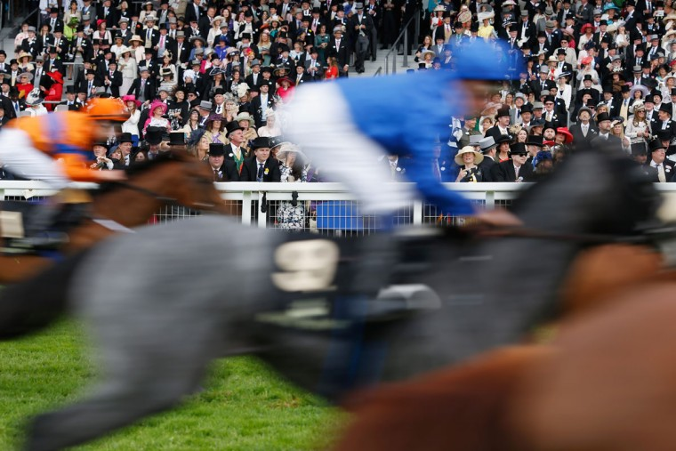 General view of the action during The Windsor Castle Stakes on day 1 of Royal Ascot at Ascot Racecourse on June 14, 2016 in Ascot, England. (Photo by Alan Crowhurst/Getty Images for Ascot Racecourse)